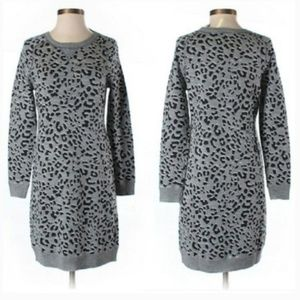 Ann Taylor Loft Animal Print Sweater Dress MP